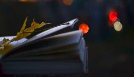fallen leaf: open book of poetry in the evening with fallen leaf on it