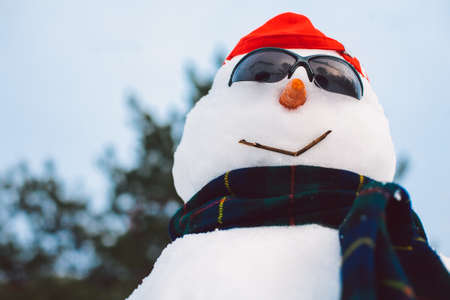 Portrait of happy snowman wearing scarf and sunglasses while enjoying winter holidays Imagens