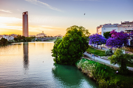 Riverside of Sevilla with trees in blossom at the sunset and the skyscraper in the background