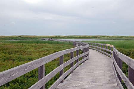 dune trail in greenwich, prince edward island, national park
