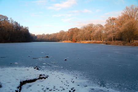dean lake: frozen lake in the forest of dean