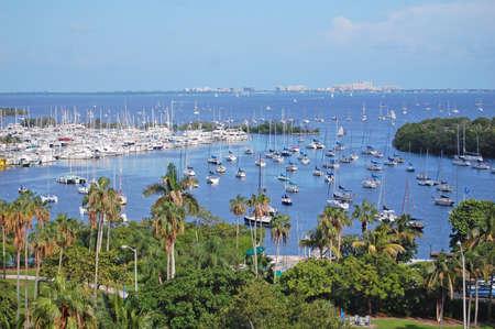 noix de coco: surplombant la baie de Biscayne � Key Biscayne, Miami