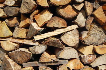 chopped natural logs in wood pile photo