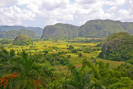 pinar: view across the Vinales Valley in Cuba