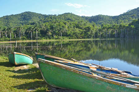 tropical  forest: lake and boats near Las Terrazas in west Cuba