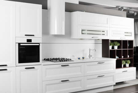 european brand new bright kitchen in the house