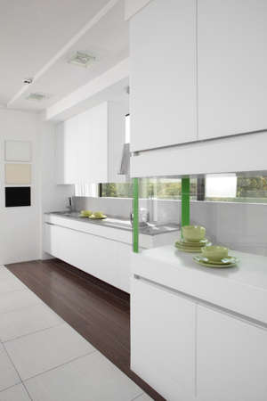 european brand new bright kitchen in the house photo