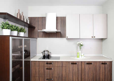 brand new and modern kitchen in european style photo