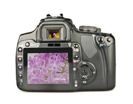 The back of a DSLR camera showing a recent taken picture. Stock Photo - 4906068