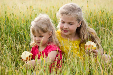 Two blonde girls sisters sitting in a wheat field and eating apples photo