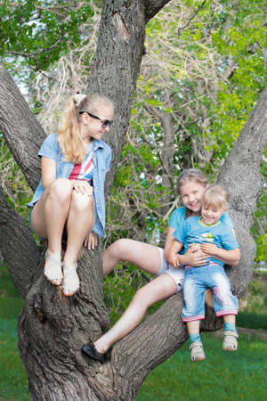 Three young beautiful girls on a tree photo
