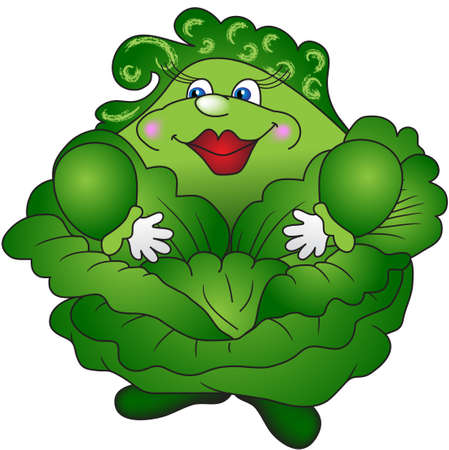 재미 자랑 두꺼운 녹색 양배추 스톡 콘텐츠 - 13838914