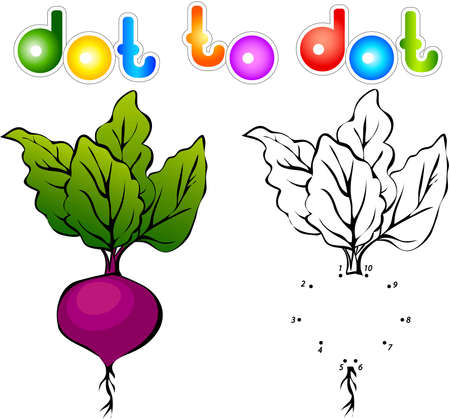 beets: Juicy and ripe beets. Educational game for kids: connect numbers dot to dot and get ready image. Vector illustration for children