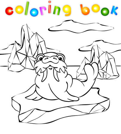 walrus: Walrus on the iceberg coloring book. Vector illustration for children