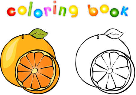 book pages: Cartoon orange coloring book. Vector illustration for children