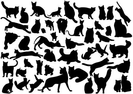 body line: Cats silhouettes set. Vector illustration on EPS 8