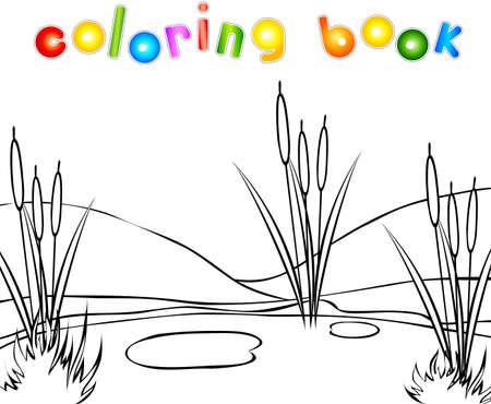 bucolic: Swamp coloring book. Vector illustration