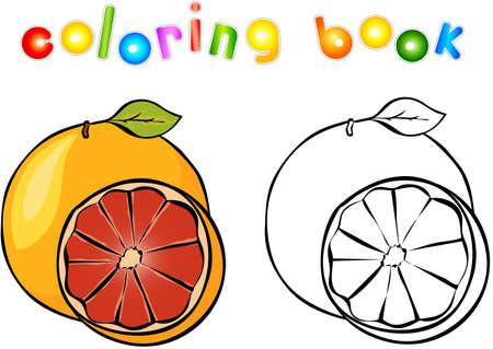 Cartoon grapefruit coloring book. Vector illustration for children