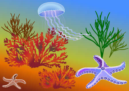 polyps: Underwater world through the eyes of the diver. Starfish and jellyfish among algae. Vector illustration on EPS 8