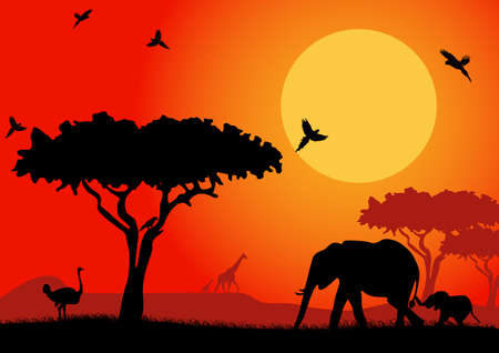 dusk: African landscape with silhouettes of animals safari. Vector illustration Illustration