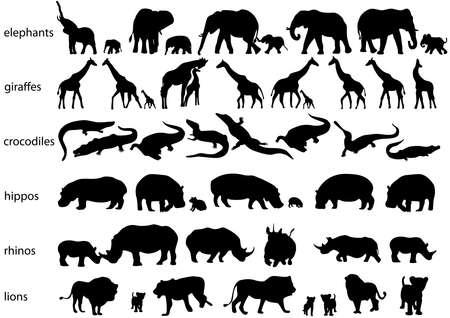 코끼리, 코뿔소, 하마, 사자, 기린과 악어의 벡터 실루엣 흰색으로 격리 일러스트