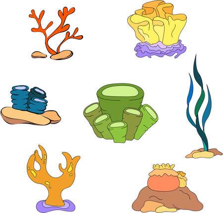algae cartoon: Cartoon corals algae. Vector illustration Illustration