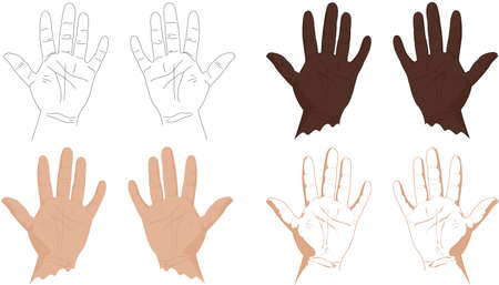 palmistry: Right and left hands with lines of life, health, success, career and other. Vector illustration