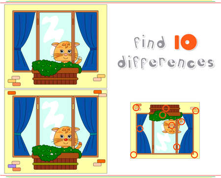flower pots: Cat sitting on the window with flower pots and curtains. Educational game for kids: find ten differences. Vector illustration Illustration