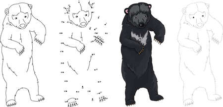 asiatic: Cartoon Asiatic black bear. Dot to dot educational game for kids. Vector illustration Illustration