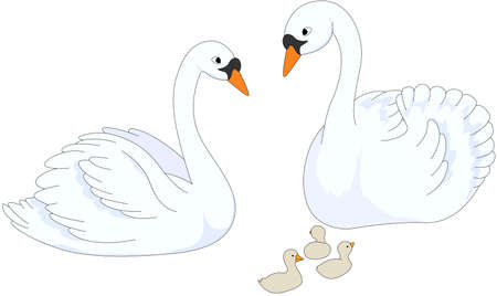 Set of swan mother, father and chicks. Vector illustration for kids