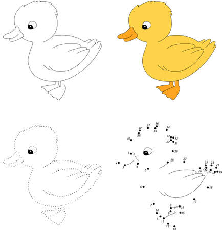 duckling: Cartoon duckling. Dot to dot educational game for kids.