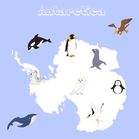 antarctica: Fauna of Antarctica. Set of cartoon polar animals for babies and little kids Illustration