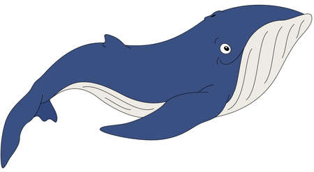Cartoon whale for babies and little kids. Picture isolated on white background