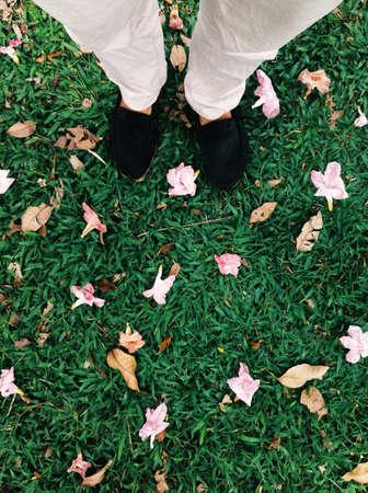 feet on flower Stock Photo