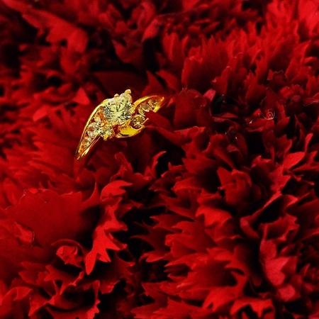 diamonds rings Stock Photo
