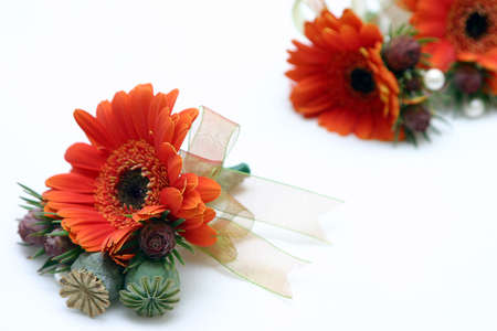cor: grooms buttonholes mad-up of fresh daisies Stock Photo