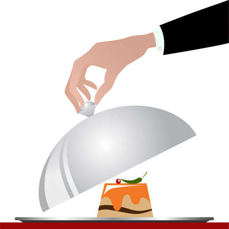 gourmet: Gourmet cuisine on a silver plate