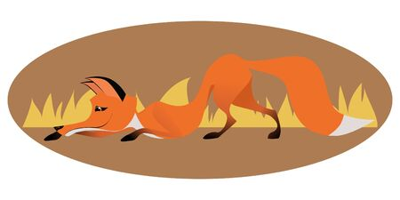 sly: Cute sly fox