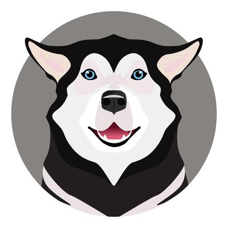malamute: Adorable black and white with blue eyes Husky on circle frame Illustration