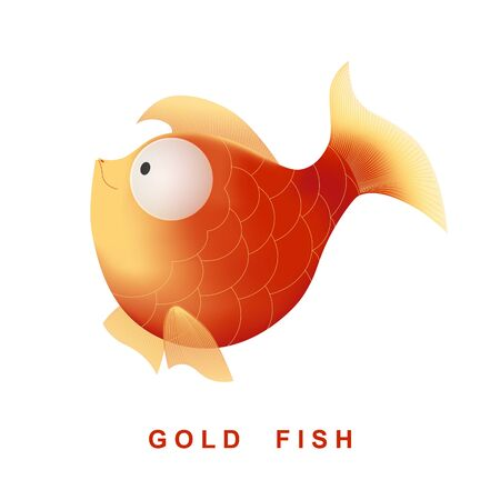 gold fish: Vector cartoon character gold fish. Isolated on the white background. Illustration