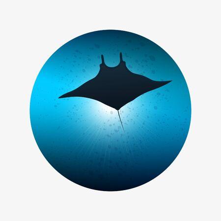 Underwater life. Big manta ray in ocean water.