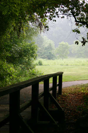 Wooden bridge and path.
