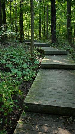 descubrir: Wander, el viaje, descubrir.  Foto de archivo