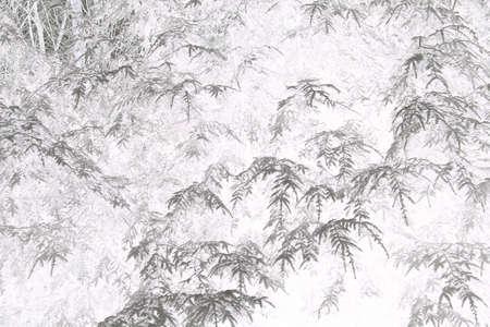 wintery: Cool, ghostly, organic, wintery grunge