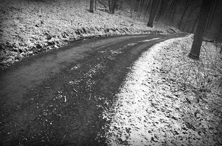 Snowy winter road through woods, bw photo