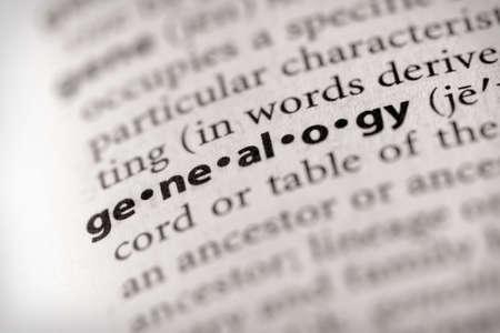 arbol geneal�gico: Genealog�a