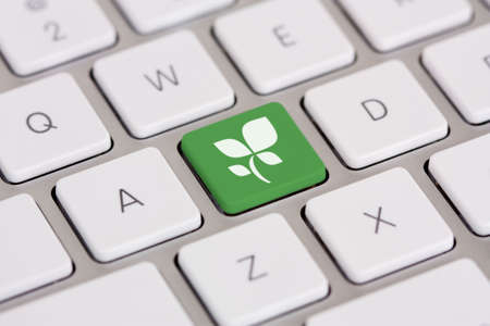 Leaf graphic on green computer keyboard key - green technology