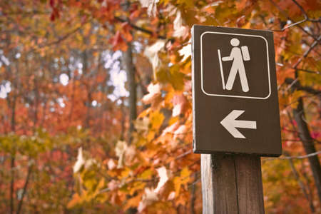 man hiking: Sign points to a hiking trail in woods in autumn