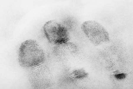 forensic science: fingerprint
