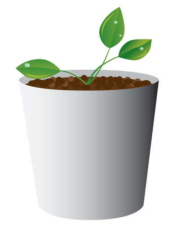 The plant with drops of dew. Vector illustration Vector